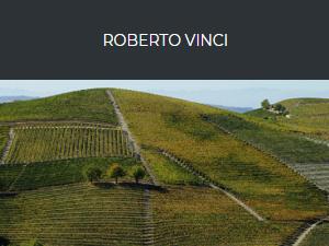 Roberto Vinci - Logo