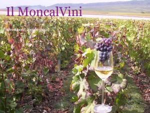 Il MoncalVini - Logo