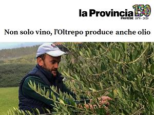 La Provincia Pavese (10/11/2020)