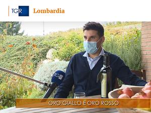 Buongiorno Regione Lombardia (05/11/2020)