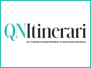 QN - Logo
